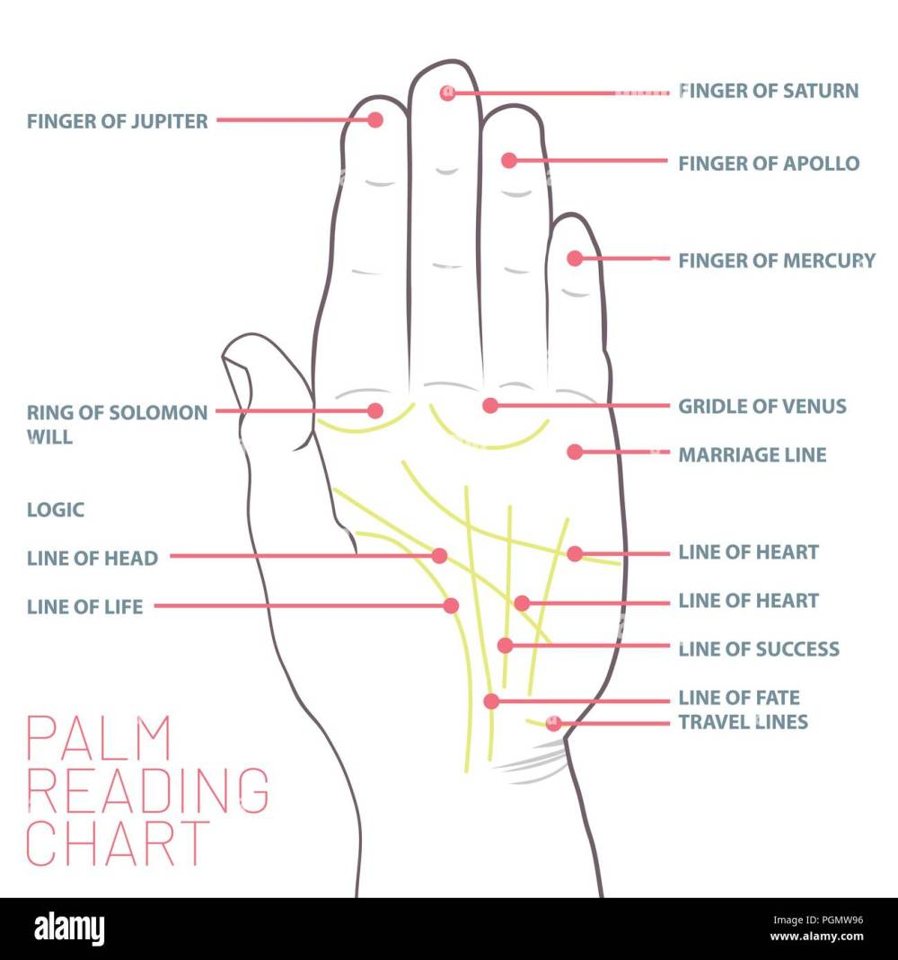 medium resolution of palm reading chart palmistry map of the palm s main lines