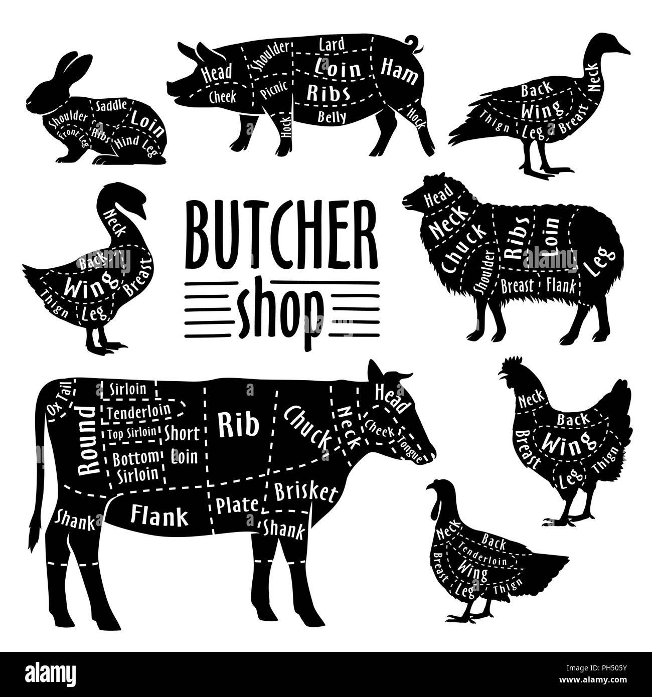 hight resolution of cut of animals meat diagram for butcher meat cut set stock image