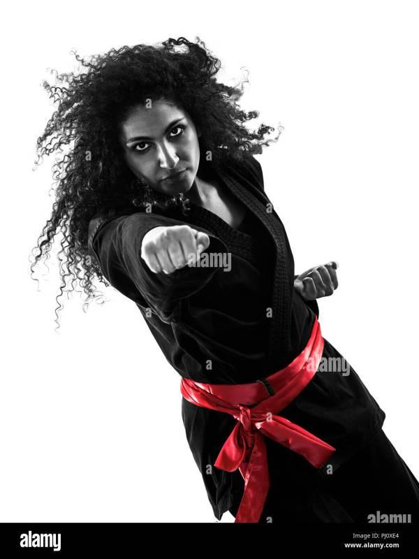 Female Martial Arts Silhouette Stock &