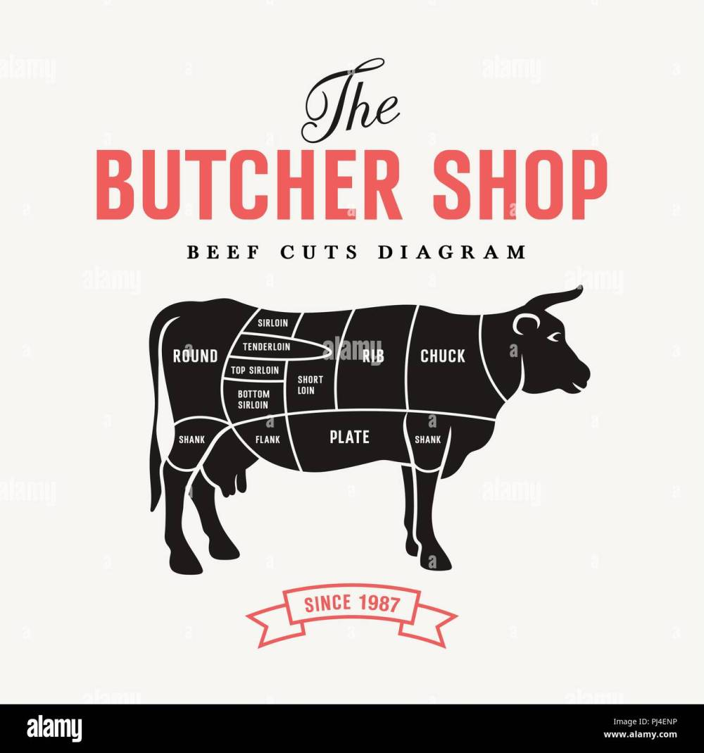 medium resolution of beef cuts diagram vector illustration for butcher shop and farm market stock image
