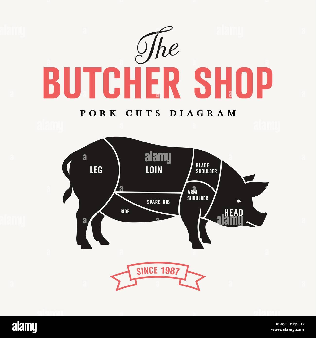 pig cuts diagram intercom wiring pork vector illustration for butcher shop and farm market