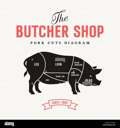 small resolution of pork cuts diagram vector illustration for butcher shop and farm market