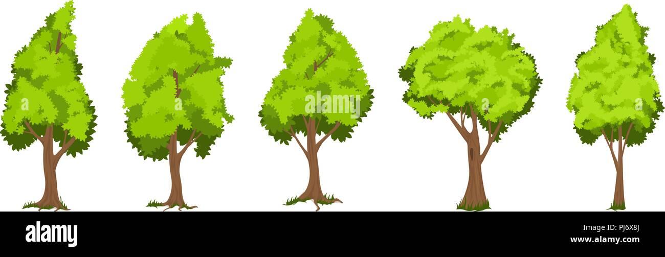 vector trees set stock