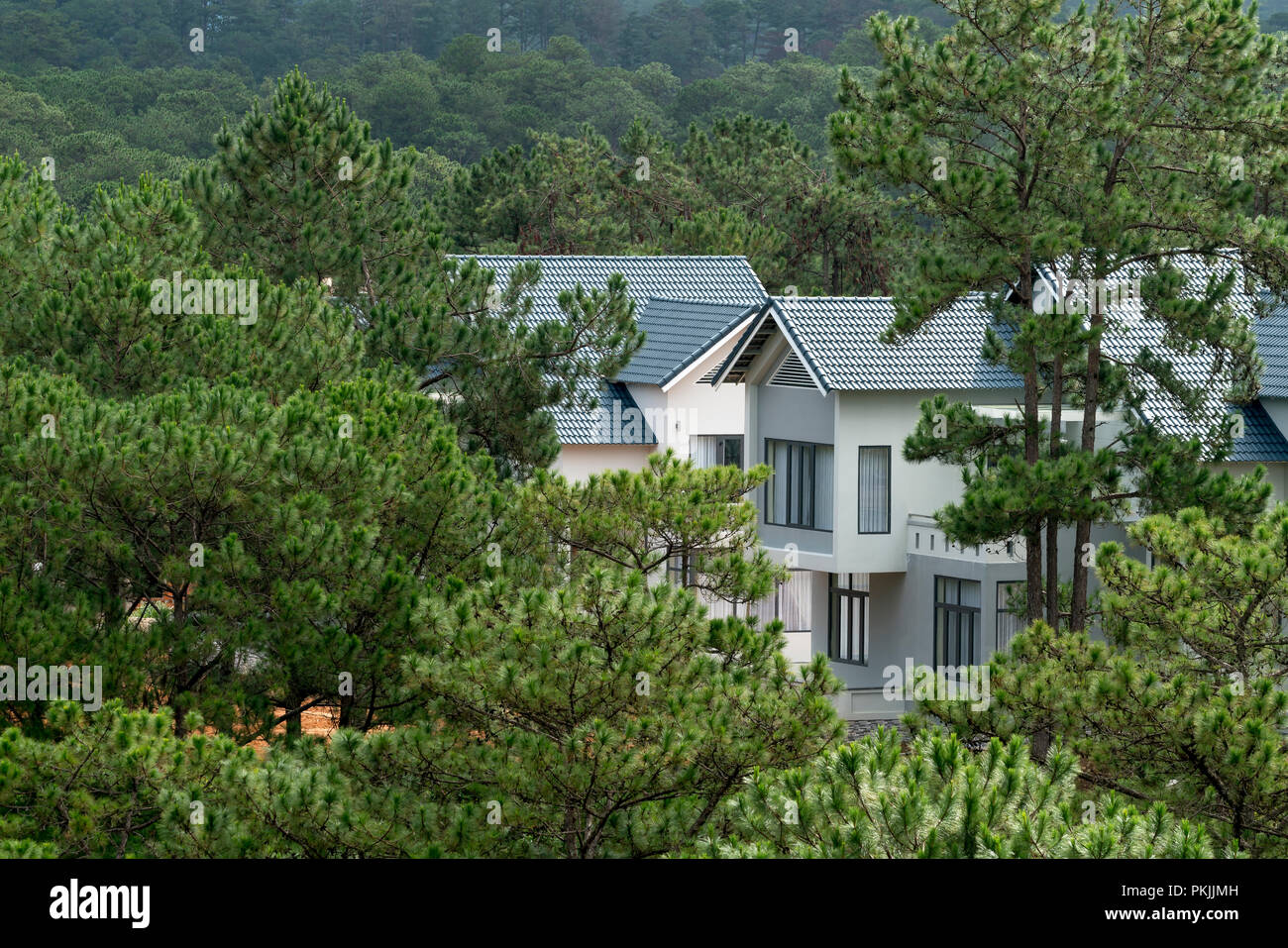 A Beautiful Resort Villa Was Built In The Pine Forest In Da