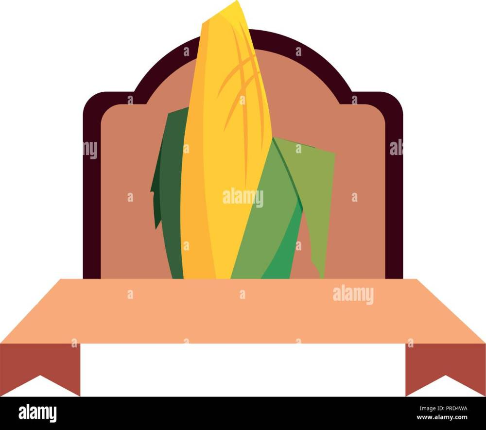 medium resolution of corn cob cereal grain classic label vector illustration stock image