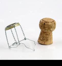 champagne cork with wire basket isolated on white stock image [ 1300 x 956 Pixel ]