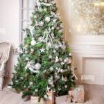 Classic Christmas And New Year Decorated Interior Room With Presents And New Year Tree Christmas Tree With White And Silver Decorations Stock Photo Alamy
