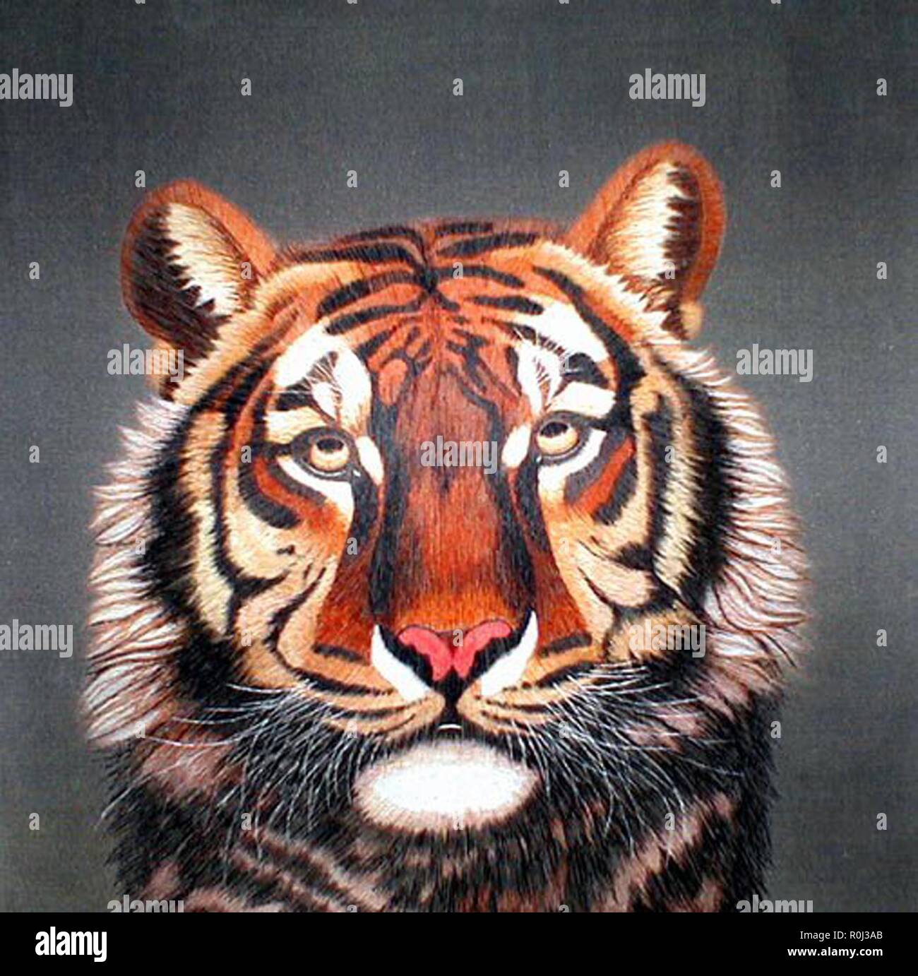 hight resolution of portrait of a tiger stock image