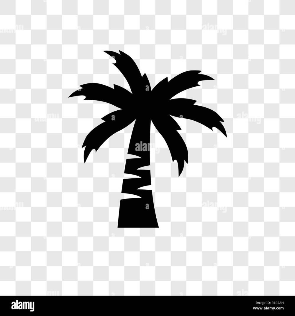 medium resolution of coconut tree vector icon isolated on transparent background coconut tree transparency logo concept stock
