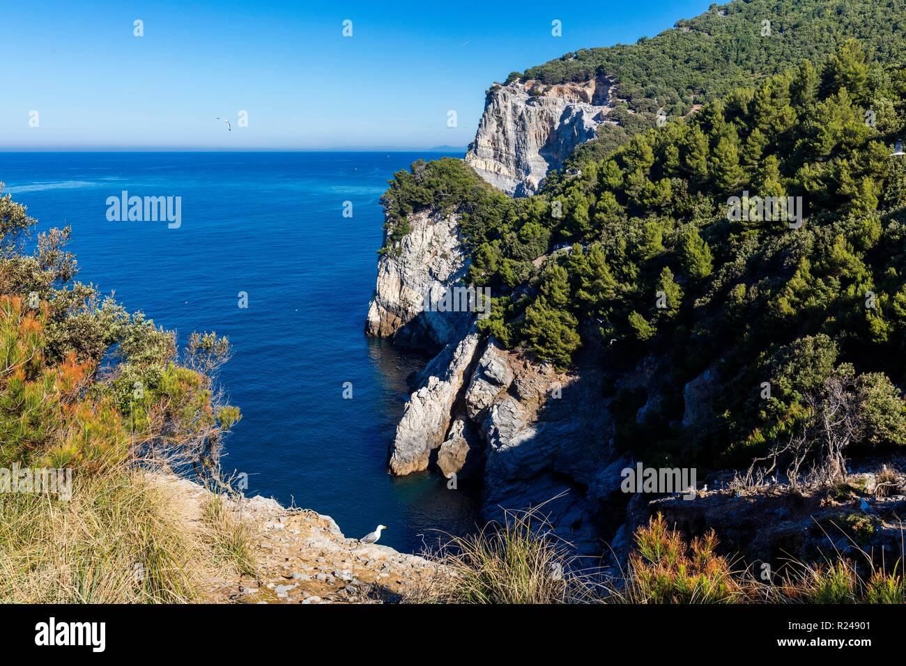 Palmaria Island Liguria Stock Photos  Palmaria Island
