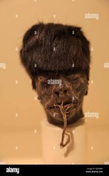 Shrunken Head Stock &