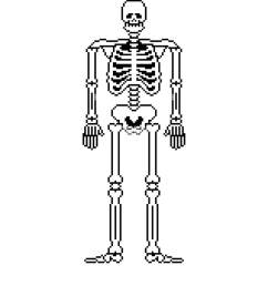 skull and bones anatomy 8 bit pixelate pelvic bone and ribs [ 1043 x 1390 Pixel ]