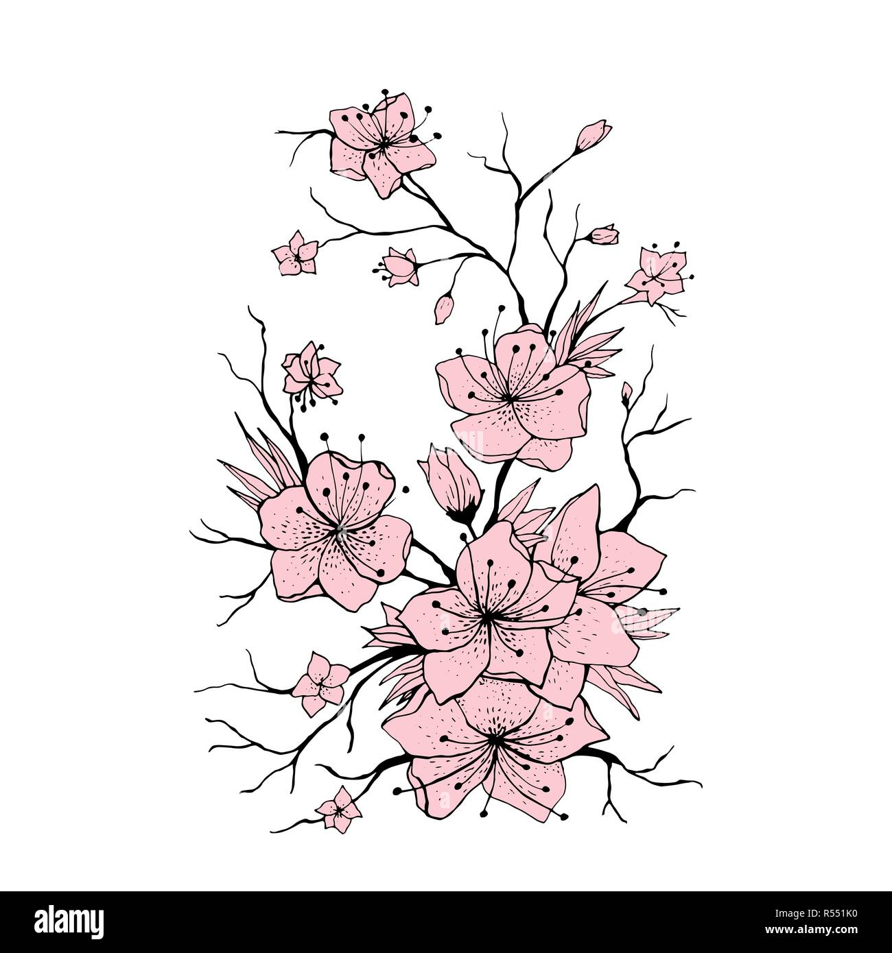 https www alamy com sakura branch hand drawn illustration japanese cherry tree twig pink flowers and buds on white background sakura branch with cherry blossom poster logo floral design element isolated vector image226919140 html