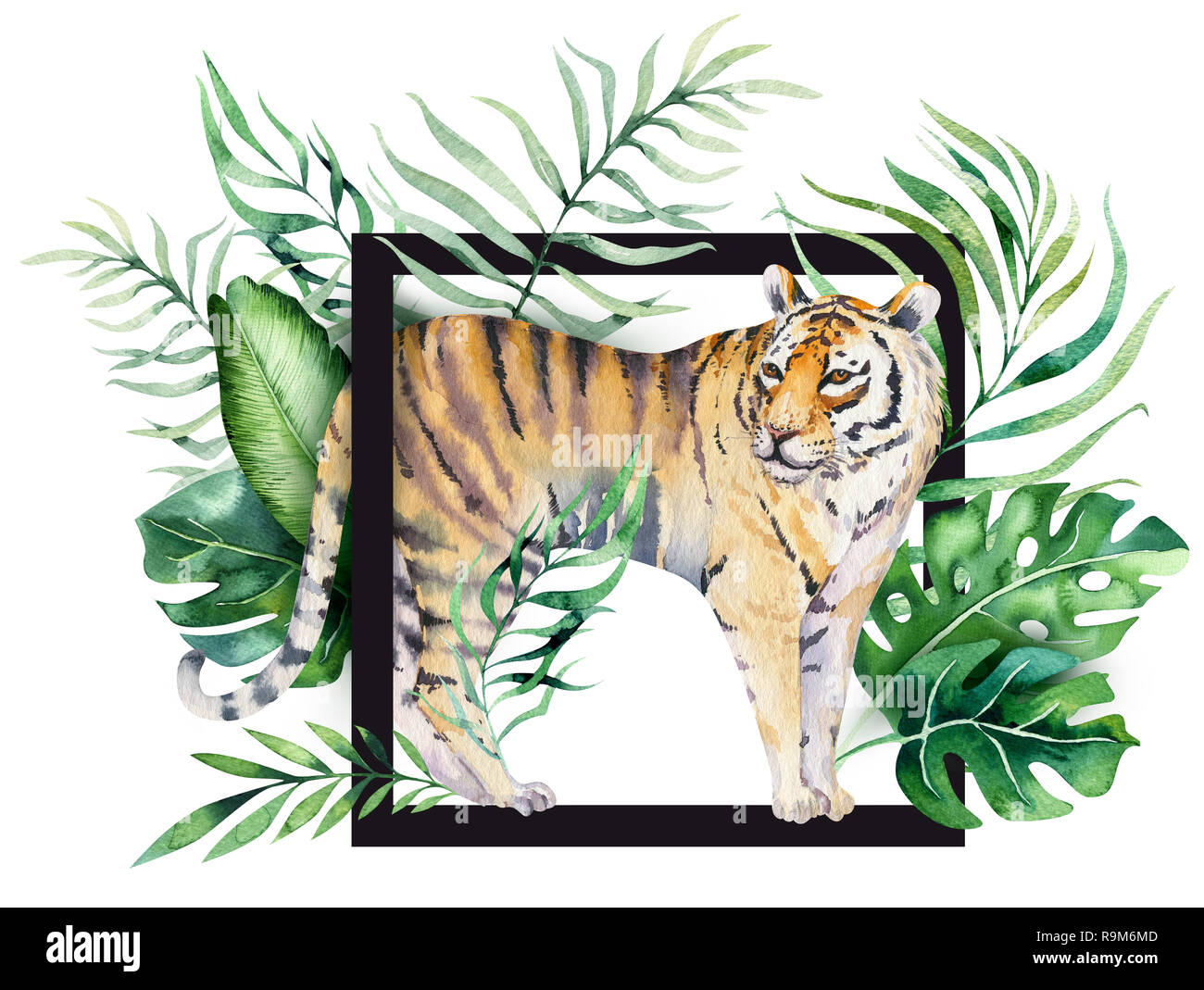 hight resolution of watercolor tiger illustration and summer paradise tropical leaves print palm plant and flower isolated o