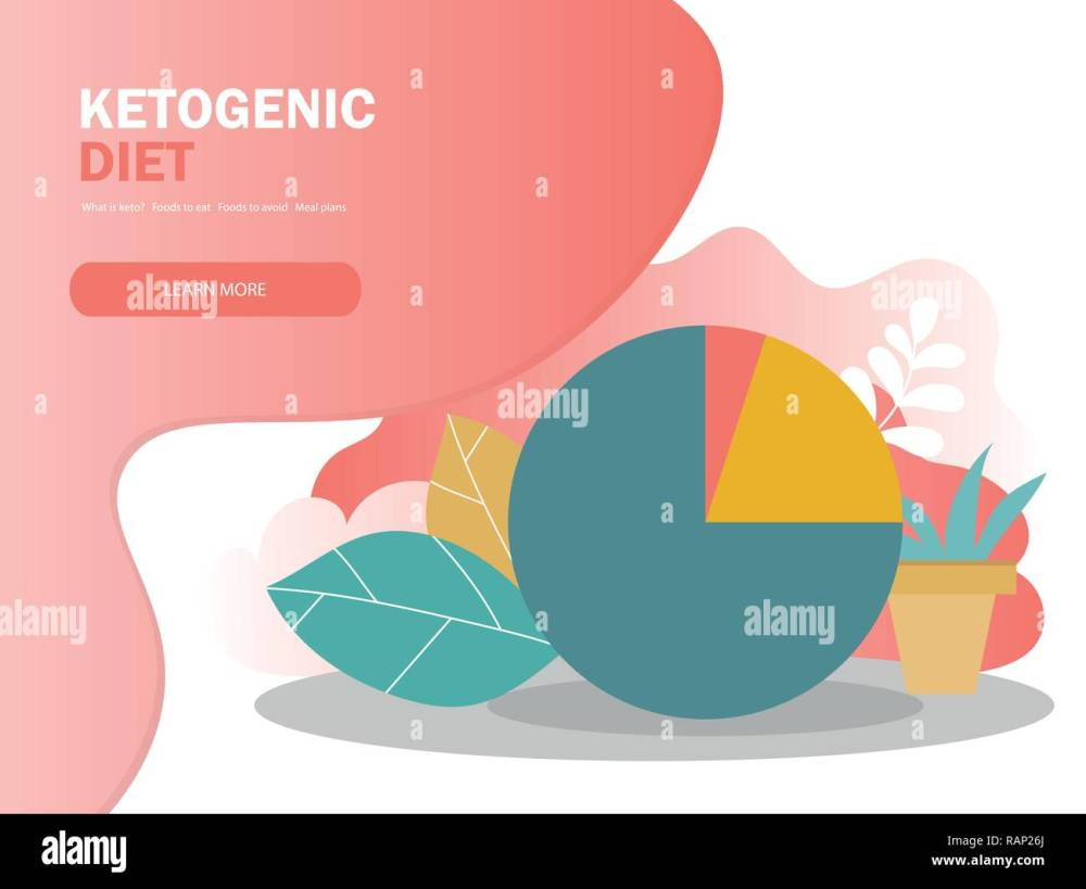 medium resolution of ketogenic diet macros diagram low carbs high healthy fat vector illustration