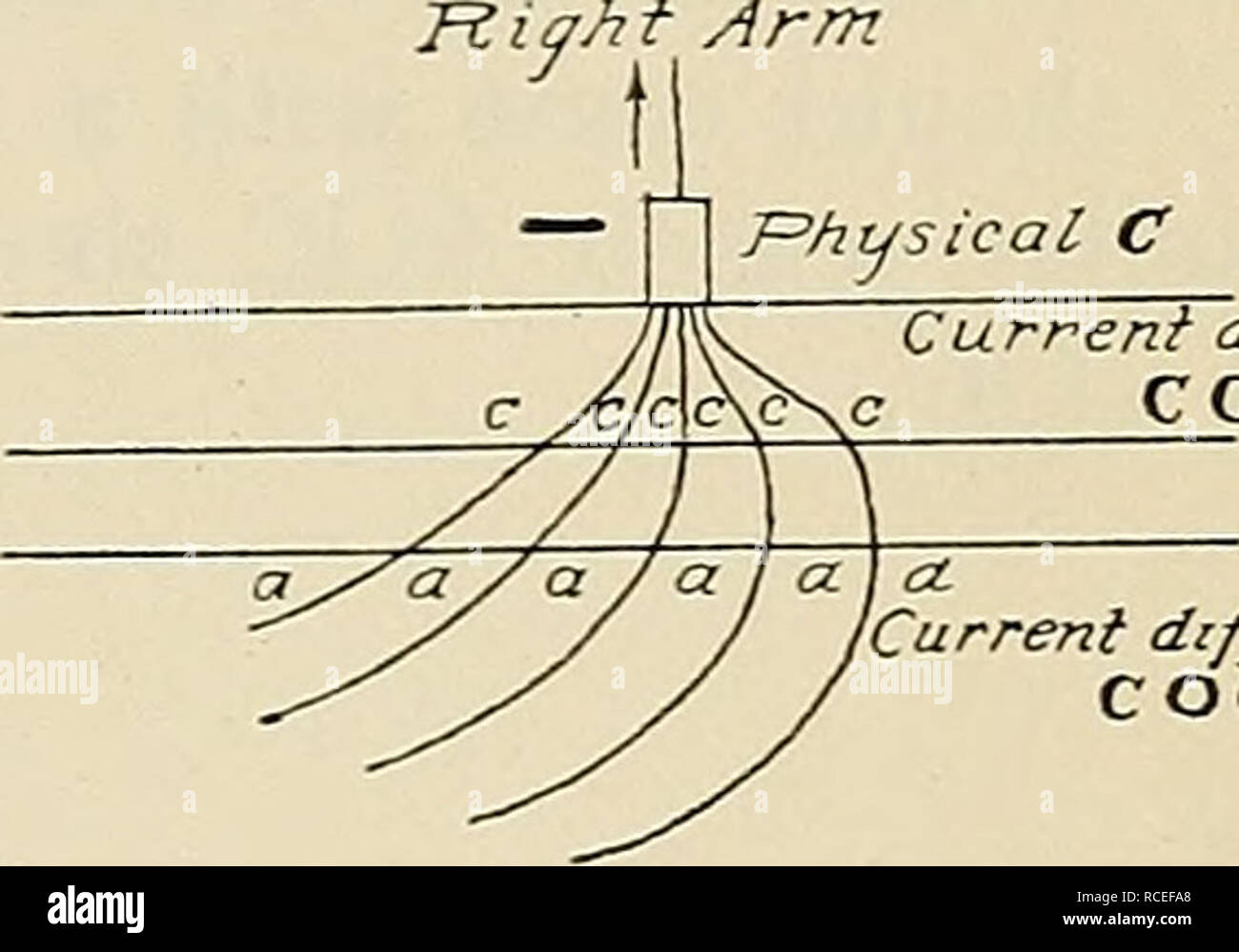 hight resolution of physiology current dense ccc i current diffuse coc rar fig 25 diagram of paths taken by direct current applied to human skin