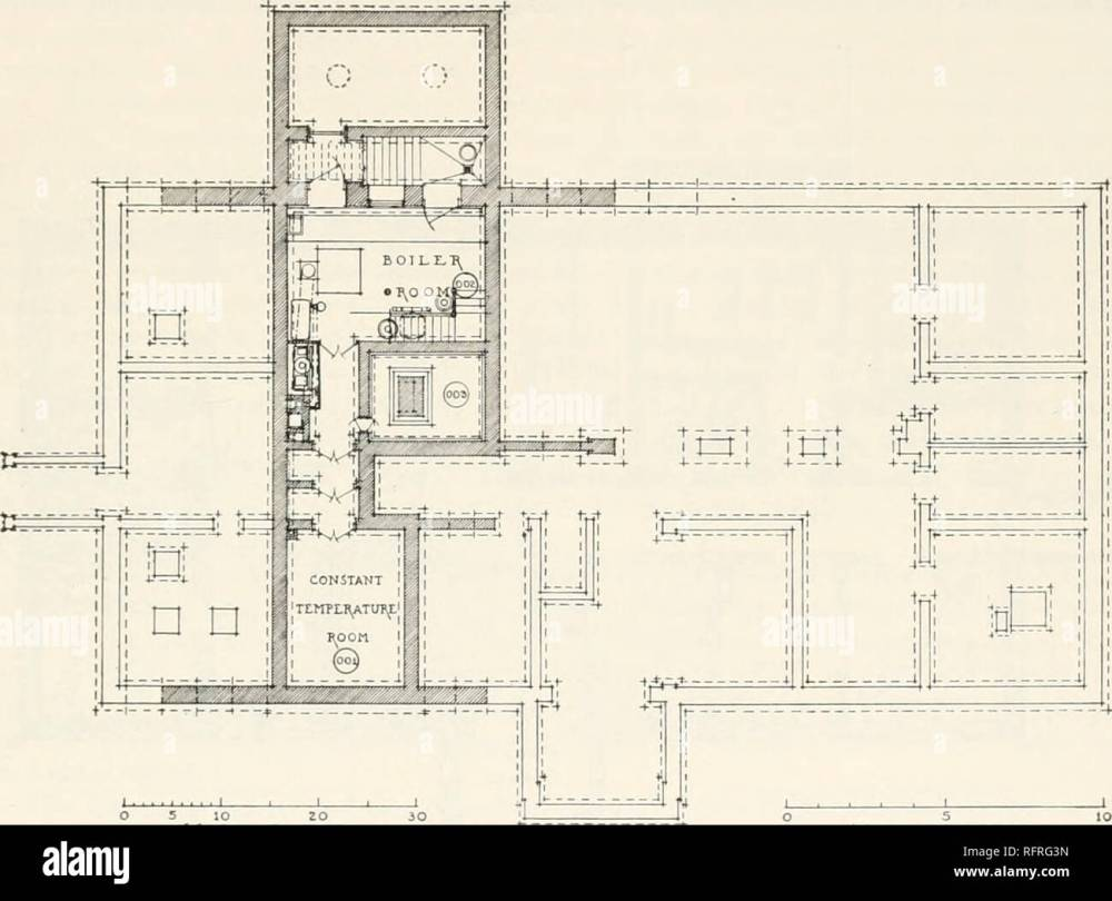 medium resolution of carnegie institution of washington publication research buildings 193 the pinnibing arrmxgements are exceptionally complete