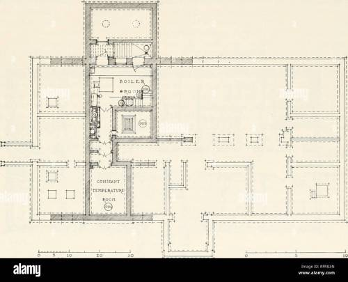 small resolution of carnegie institution of washington publication research buildings 193 the pinnibing arrmxgements are exceptionally complete