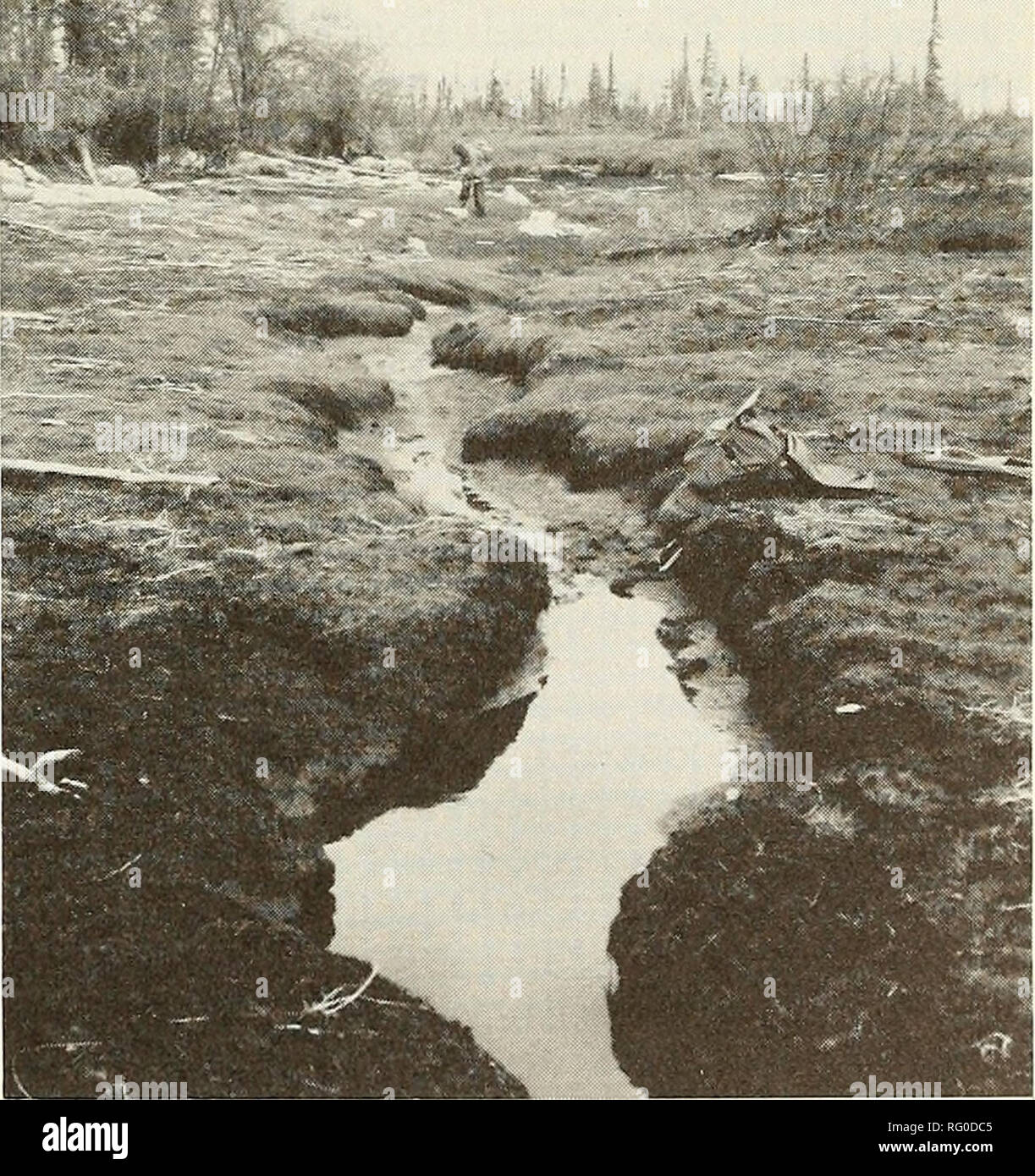 hight resolution of sketch diagram of karst and beaver canals at limestone reef within peatland complex attawapiskat river ontario channel between the sinks and the small