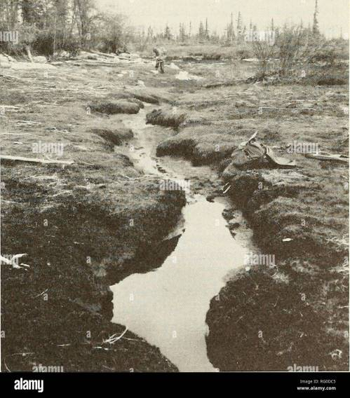 small resolution of sketch diagram of karst and beaver canals at limestone reef within peatland complex attawapiskat river ontario channel between the sinks and the small