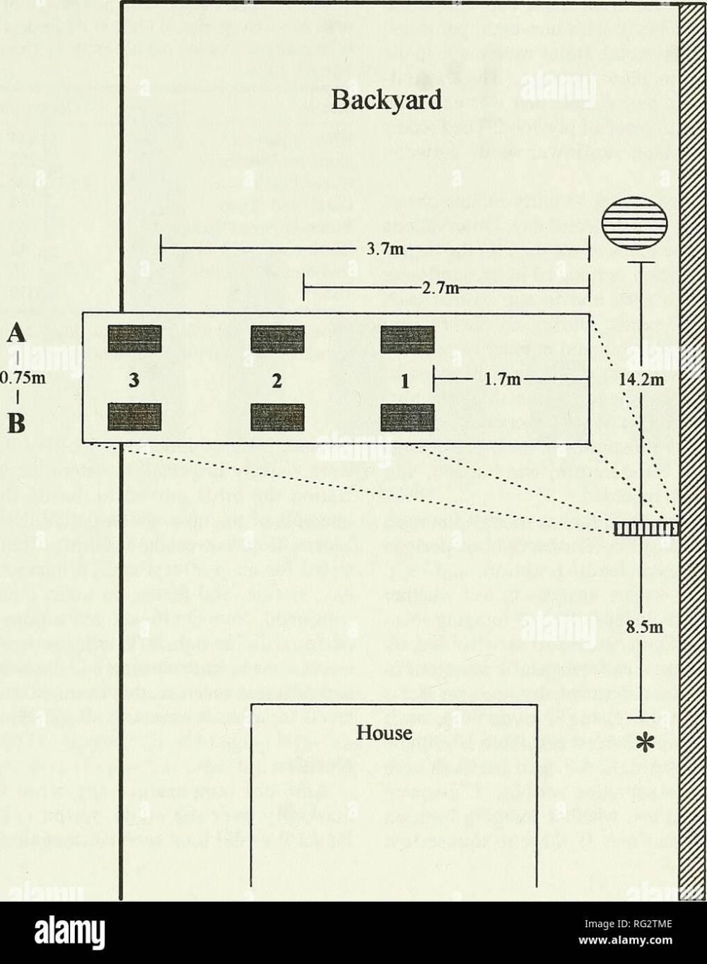 medium resolution of cedar hedge table w bird feeders maple tree fence q muffin tin h observer figure 1 diagram of stxidy location