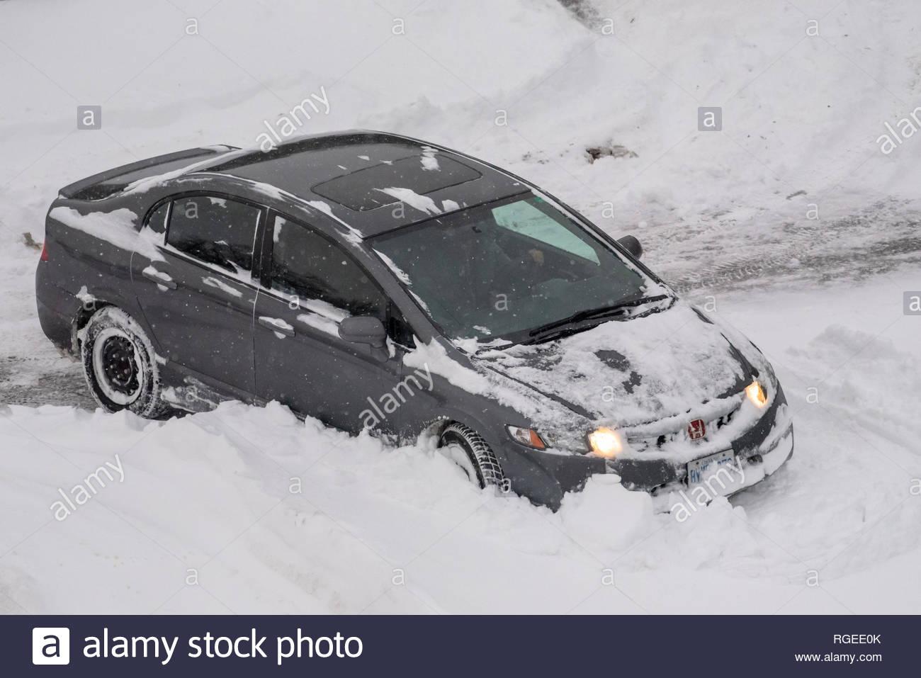 hight resolution of gray honda car rears in the parking lot