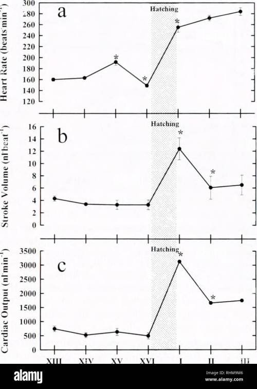 small resolution of crayfish heart physiological development 81 embryonic response to normoxic and hyperoxic exposure with significance at the level of p 0 05