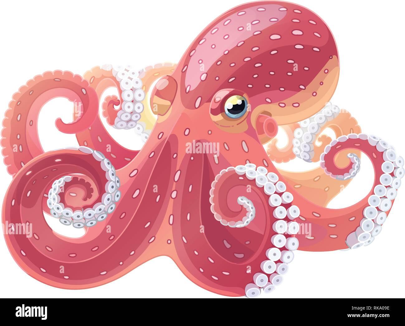 hight resolution of vector cartoon animal clipart octopus sea life