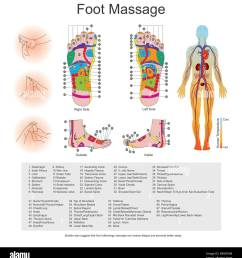 while various types of reflexology related massage styles focus on the feet massage of the soles of the feet is often performed purely for [ 1238 x 1390 Pixel ]
