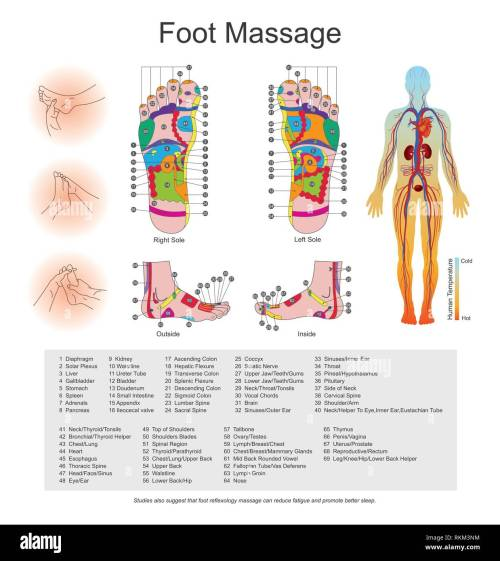 small resolution of while various types of reflexology related massage styles focus on the feet massage of the soles of the feet is often performed purely for