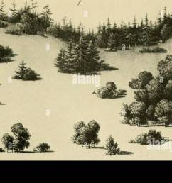 the art of landscape architecture its development and its application to modern landscape gardening landscape gardening a diagram showing arrangement  [ 1300 x 727 Pixel ]
