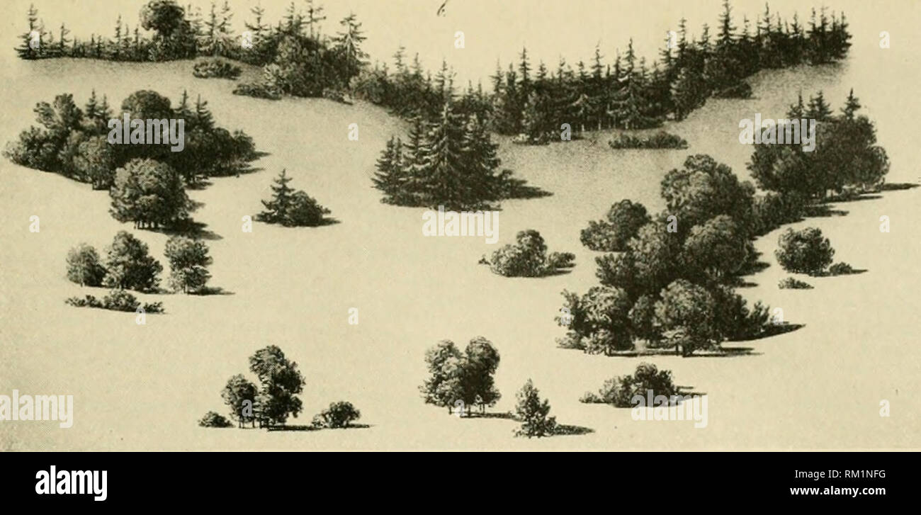 hight resolution of  the art of landscape architecture its development and its application to modern landscape gardening landscape gardening a diagram showing arrangement