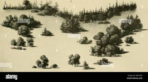 small resolution of  the art of landscape architecture its development and its application to modern landscape gardening landscape gardening a diagram showing arrangement