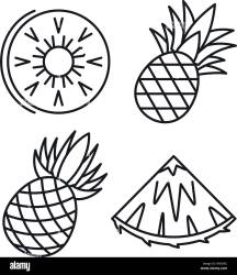 Exotic pineapple icons set Outline set of exotic pineapple vector icons for web design isolated on white background Stock Vector Image & Art Alamy