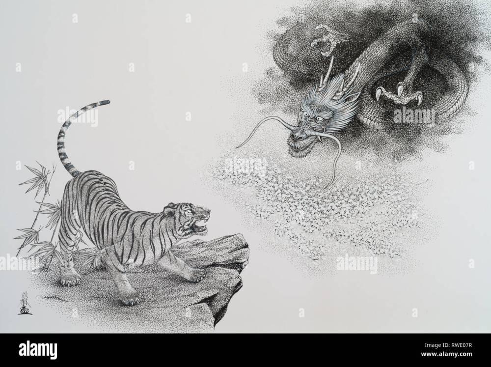 medium resolution of tiger and dragon illustration stock image