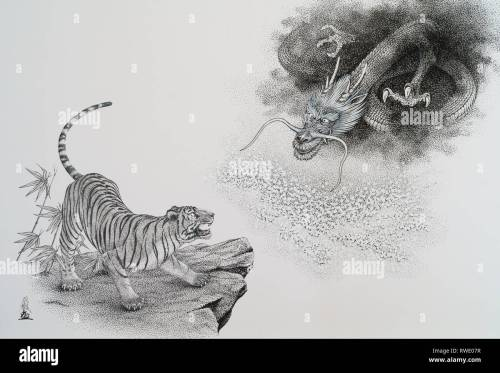 small resolution of tiger and dragon illustration stock image