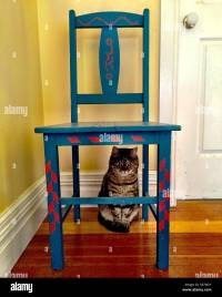 Cat sitting under a a folk art painted chair Stock Photo ...