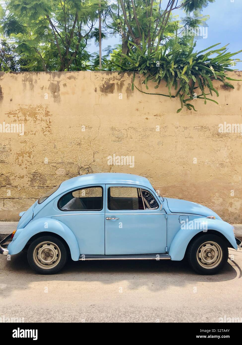 Blue Beetle Cars : beetle, Beetle, Supercars, Gallery