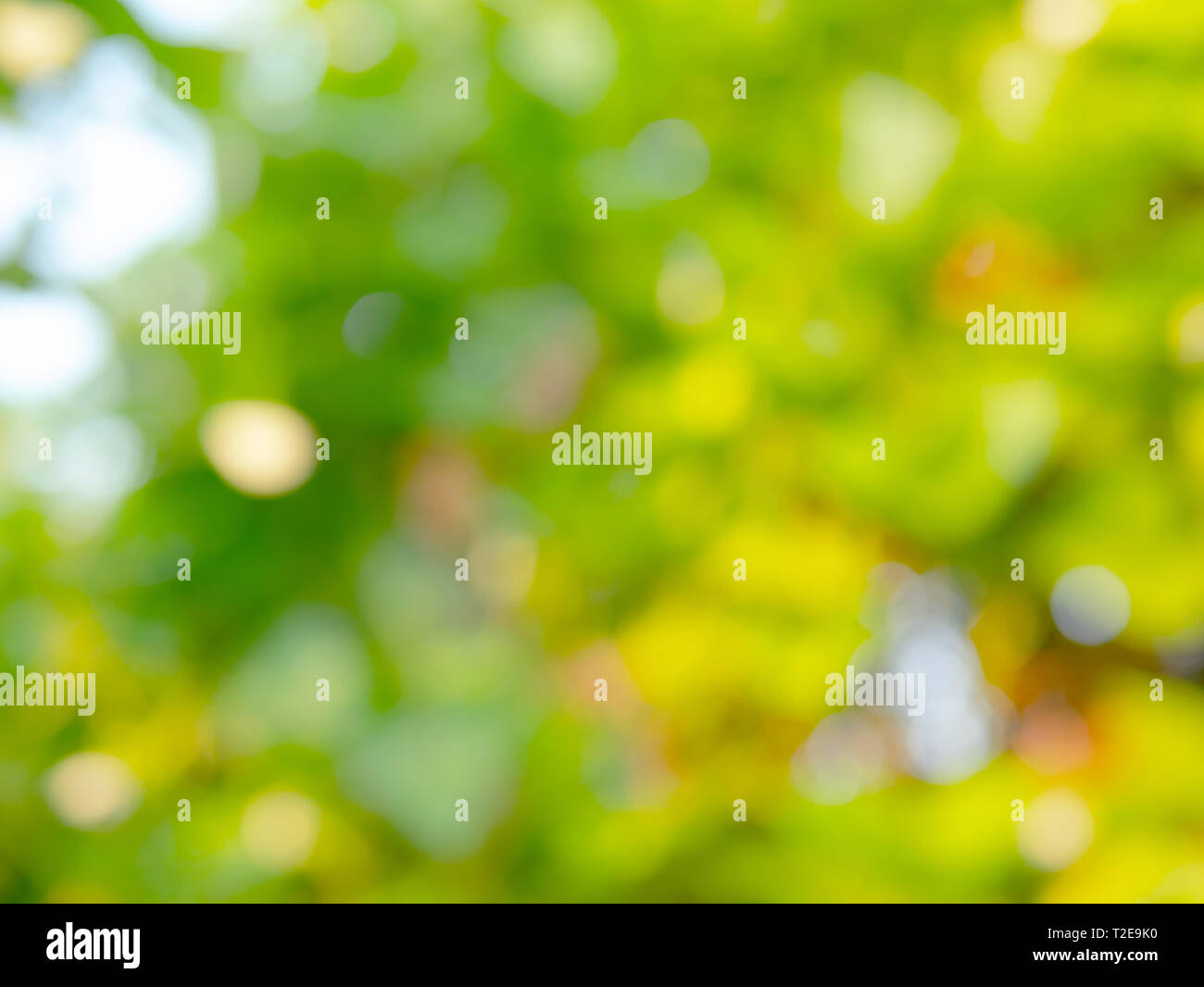 abstract background and texture