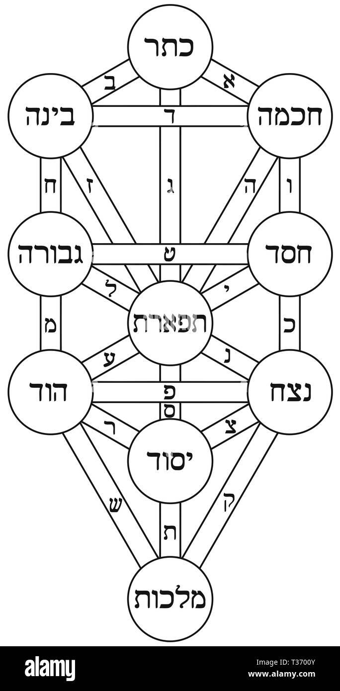 medium resolution of kabbalah tree of life alchemy jewish hebrew numerology illustration stock image