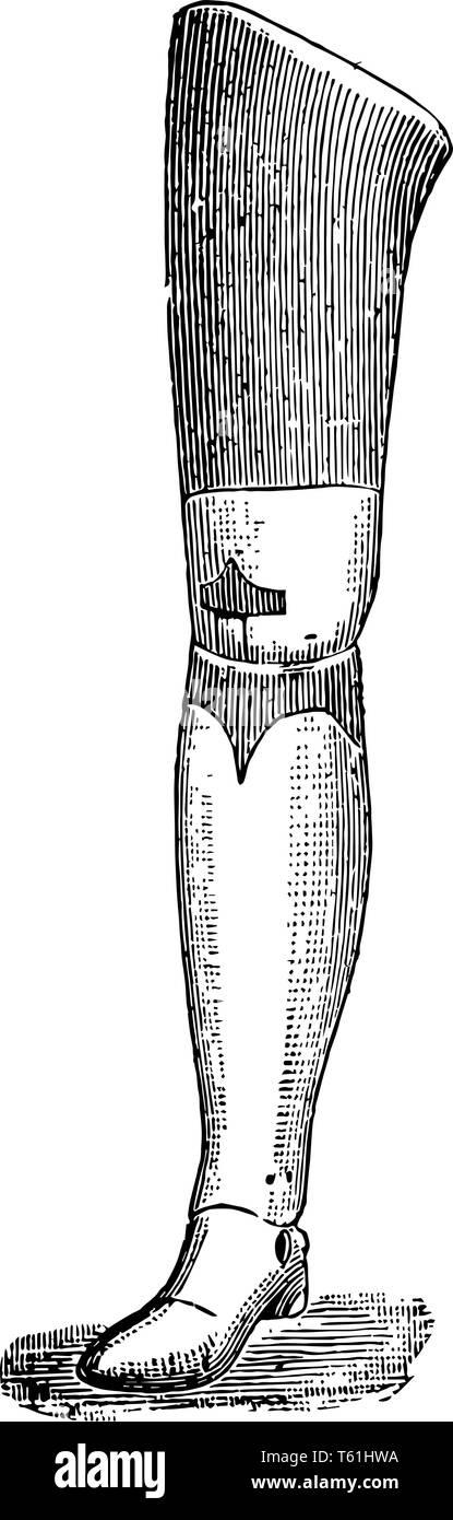 Prosthetic Leg Drawing : prosthetic, drawing, Prosthetic, Black, White, Stock, Photos, Images, Alamy