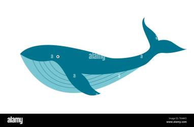 Cartoon Whale High Resolution Stock Photography and Images Alamy