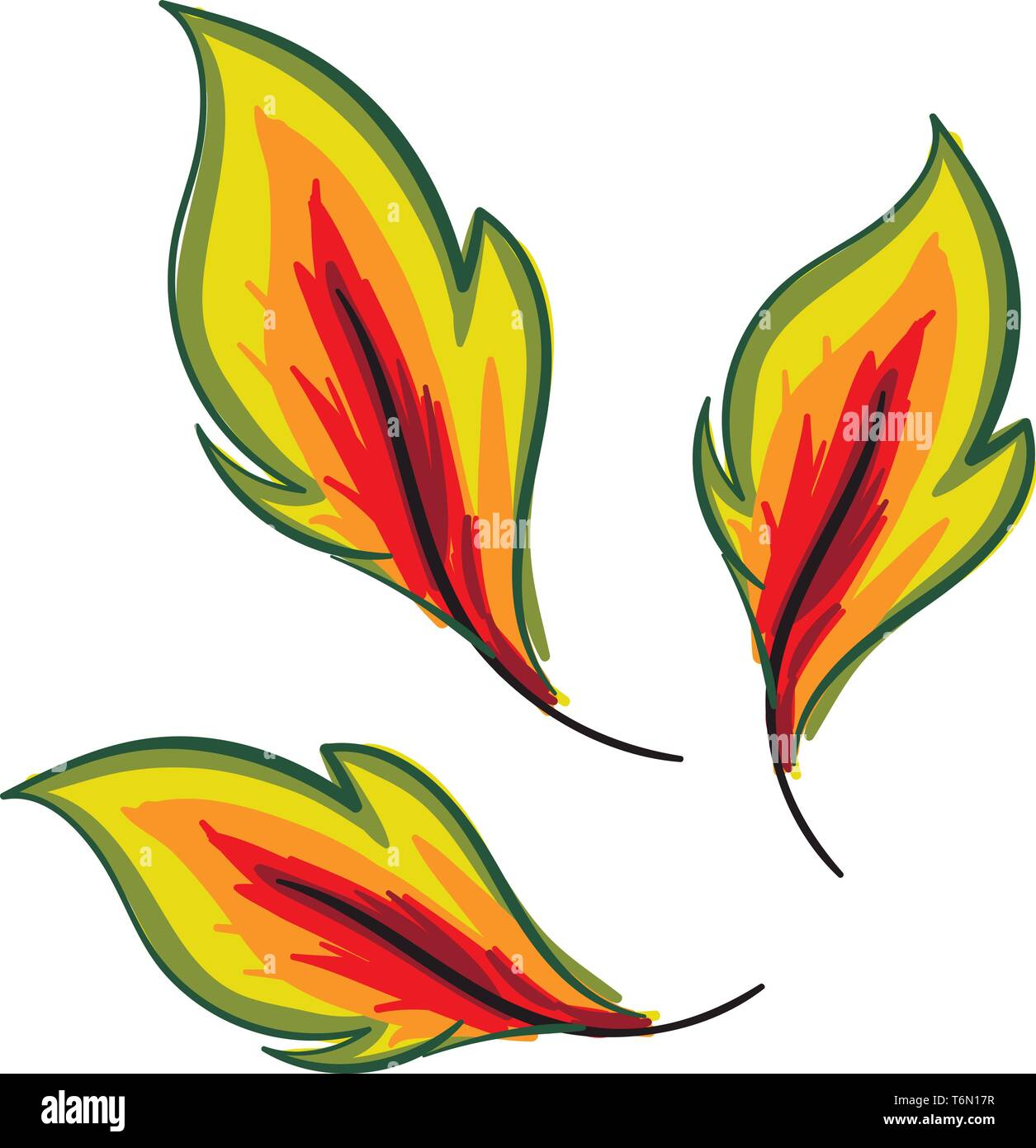 hight resolution of clipart of three autumn leaves turning yellow have a round toothed and scalloped edge vector color drawing or illustration