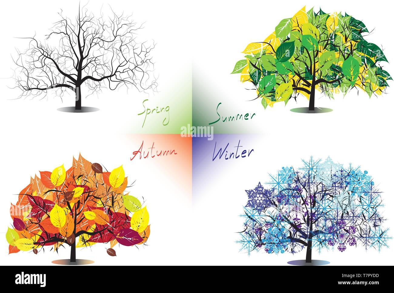 Four Seasons Trees Stock Vector Art Amp Illustration Vector