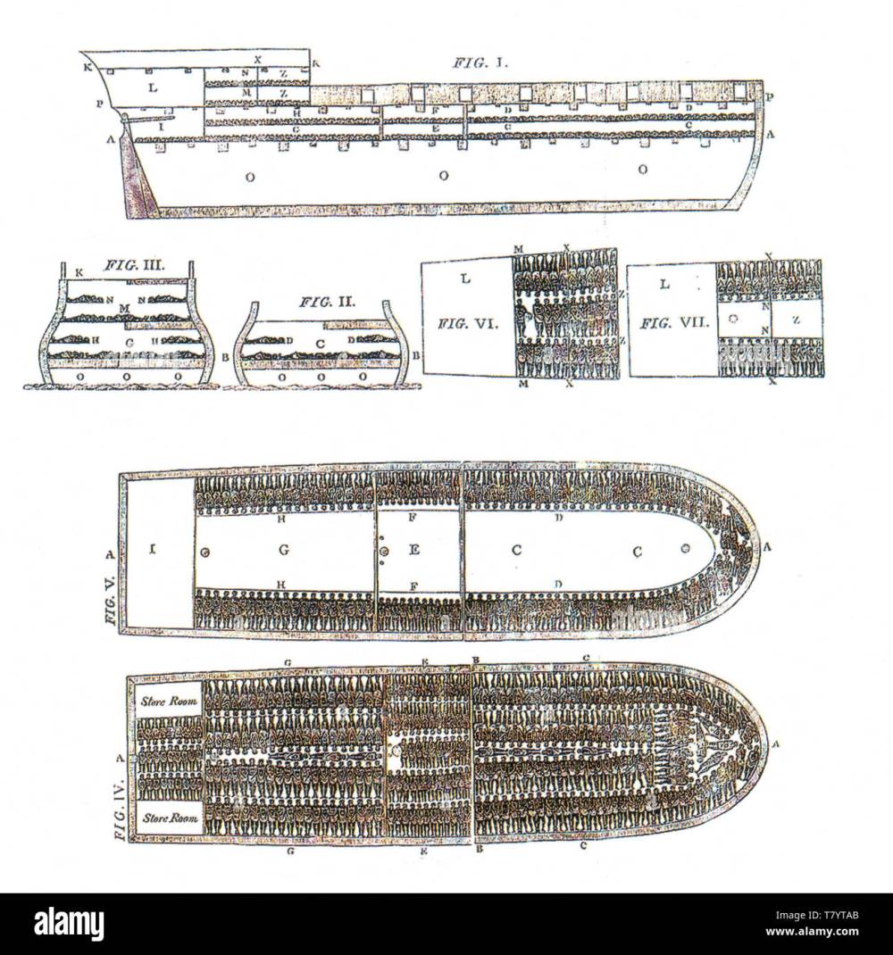 medium resolution of brookes english slave ship 1788