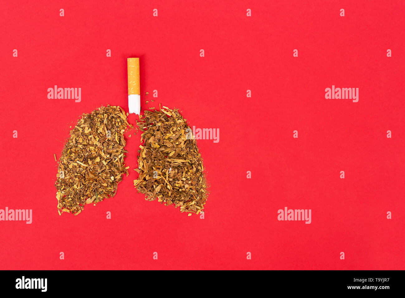 healthy lung and smokers
