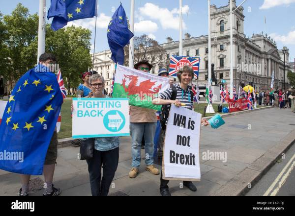Brexit Referendum Supporters Stock &