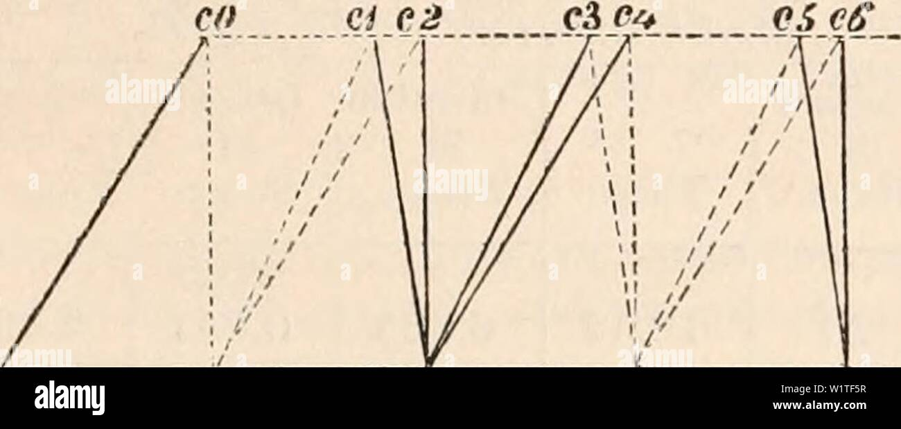 hight resolution of archive image from page 478 of the cyclop dia of anatomy and the cyclop dia of anatomy