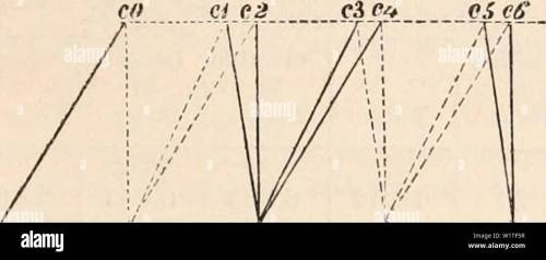small resolution of archive image from page 478 of the cyclop dia of anatomy and the cyclop dia of anatomy