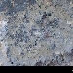 Rough Granite Texture For Background Or Backdrop Stock Photo Alamy
